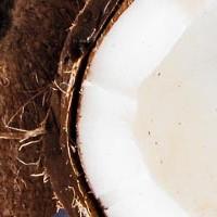 Spezzatino al cocco