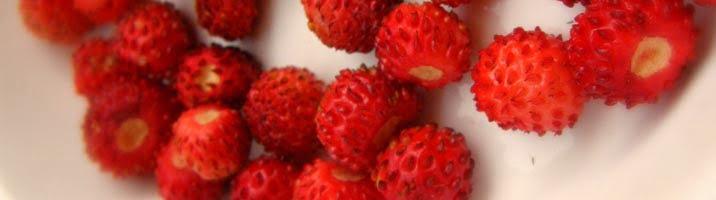 Torta alle fragoline di bosco