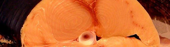 Cestini di pesce spada affumicato